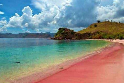 Open Trip Menuju Pink Beach Lombok
